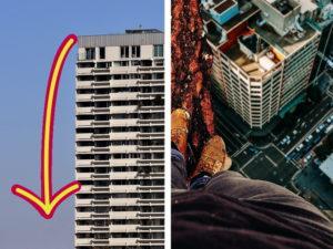 Kater überlebt Sprung vom 18. Stock