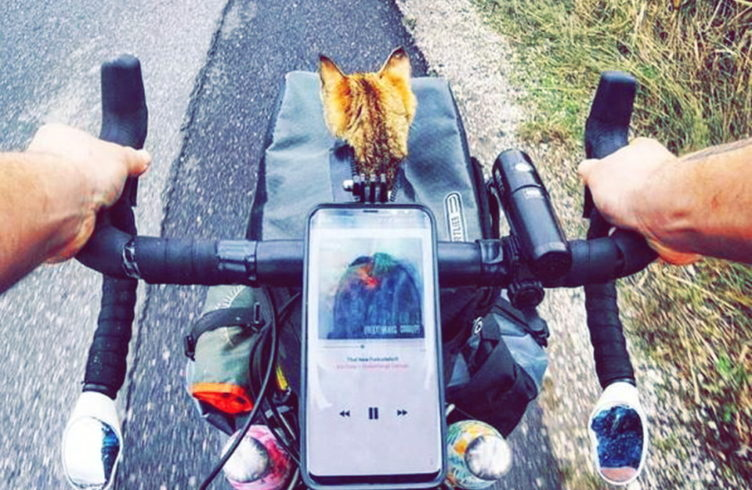 Mit Dem Fahrrad Um Die Welt Mit Katze Katzen Wie Wir