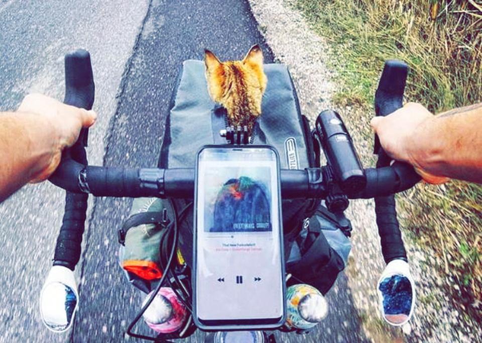 Mit dem Fahrrad um die Welt, mit Katze