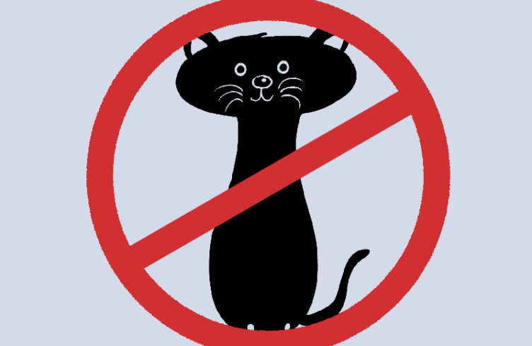 Katzen Freigang Verbot