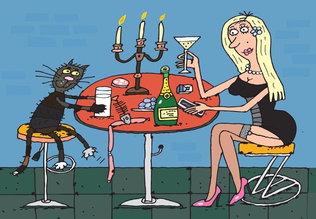 Dating-Schreck Katzen-Mensch