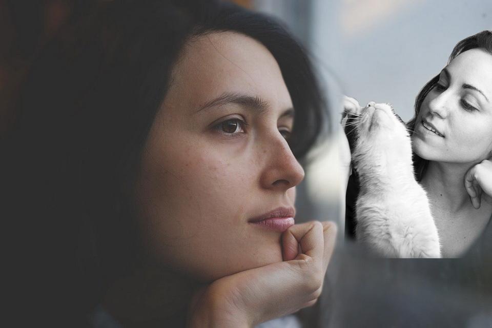 Hoffnung für Katzen-Allergiker