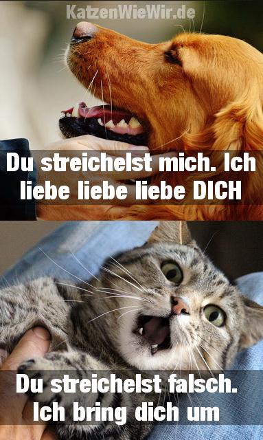 Memes Lustig
