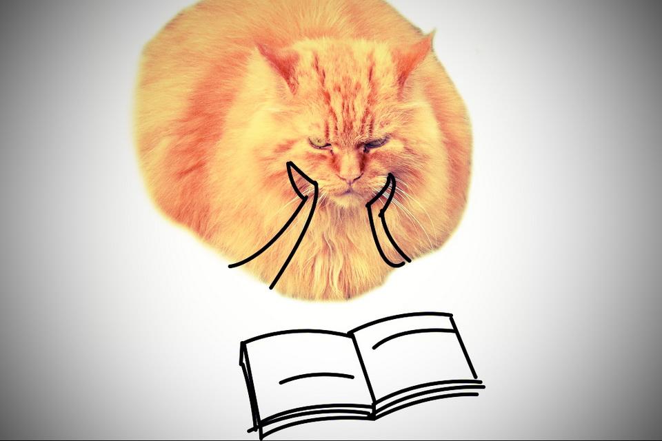 Minimal Cat Art 13-24