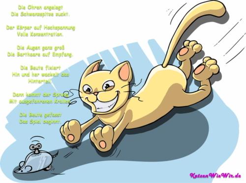 KatzenWieWir_Auf der Jagd