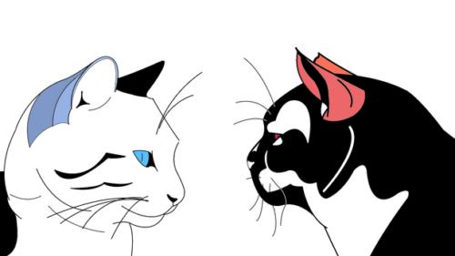 Politi-Cats