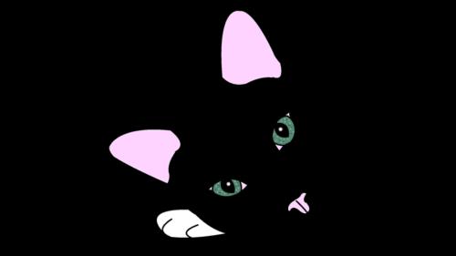 Minimal Cats